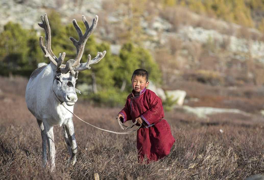 ילד מונגולי עם אייל הצפון