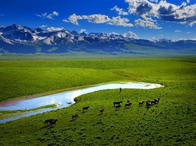 (שבת) אזור המעיינות החמים ומשחקים מונגוליים