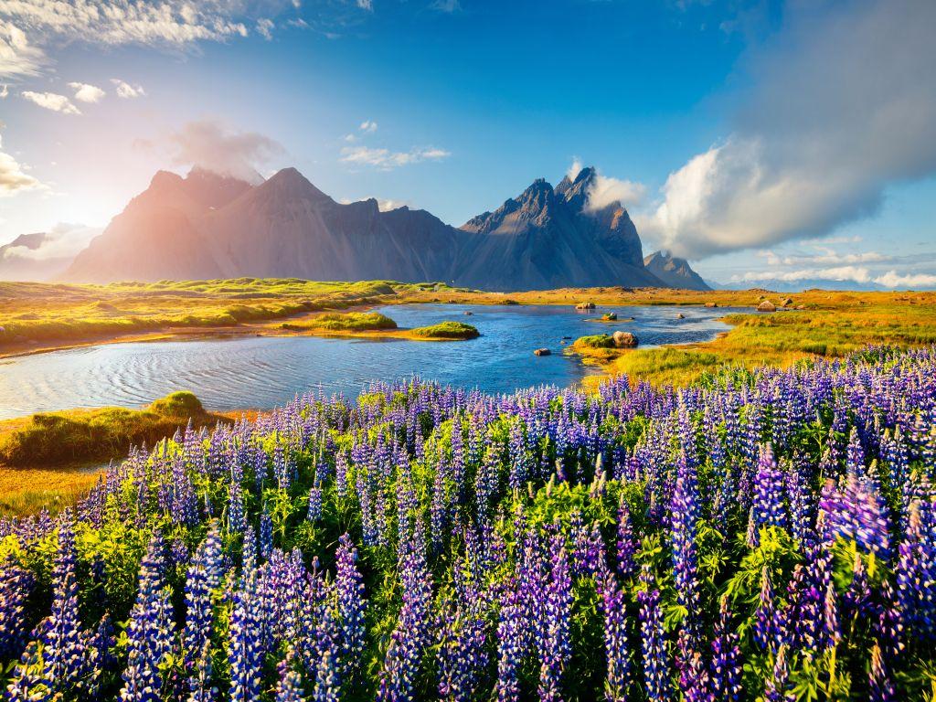 יום עשיר להפליא בחוויות הטבע