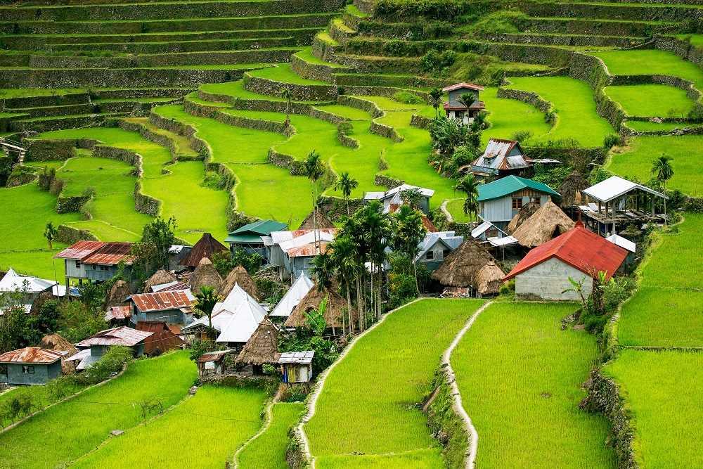 (ג') טרסות האורז המרהיבות- יום טיול בכפר בטאד